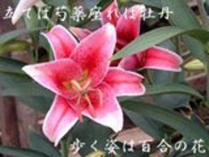 11_626001_r